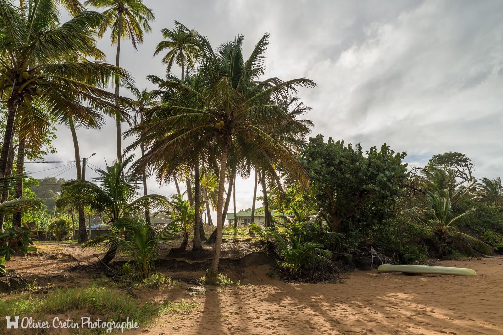 Guadeloupe - Plage de la perle - Oasis de soleil