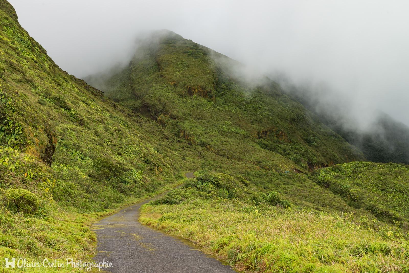 Guadeloupe - Pentes de la soufrière - Le chemin du Mordor