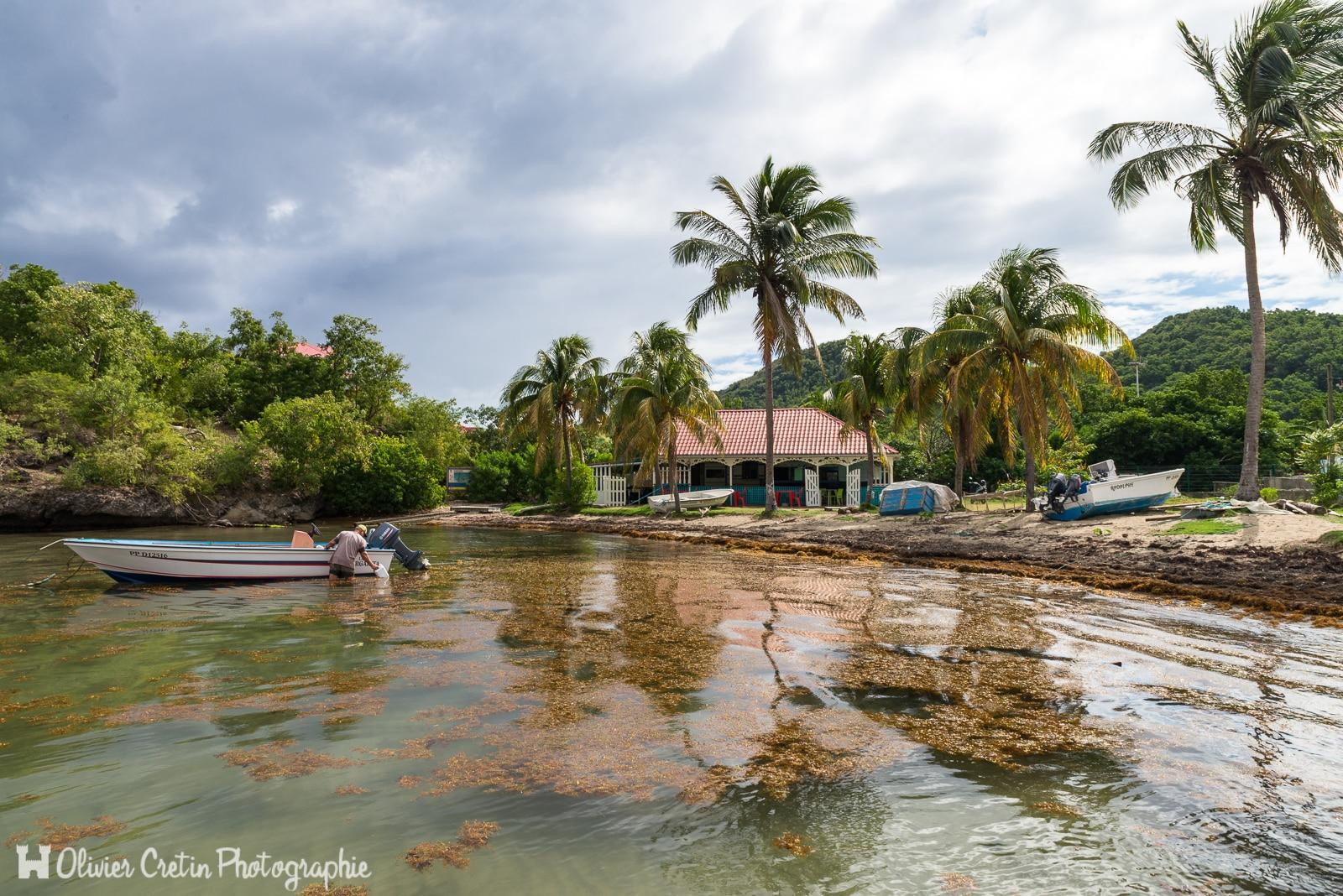 Guadeloupe - Terre de Haut (les Saintes) - Ecopage du matin sur une plage moyen paradisiaque