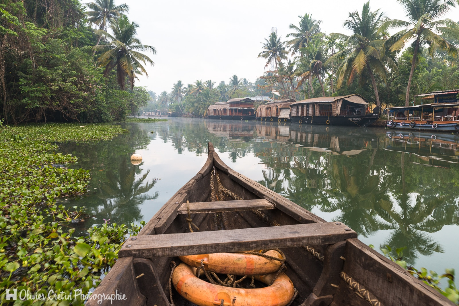 Inde - Kumarakom - Balade en pirogue sur les backwaters