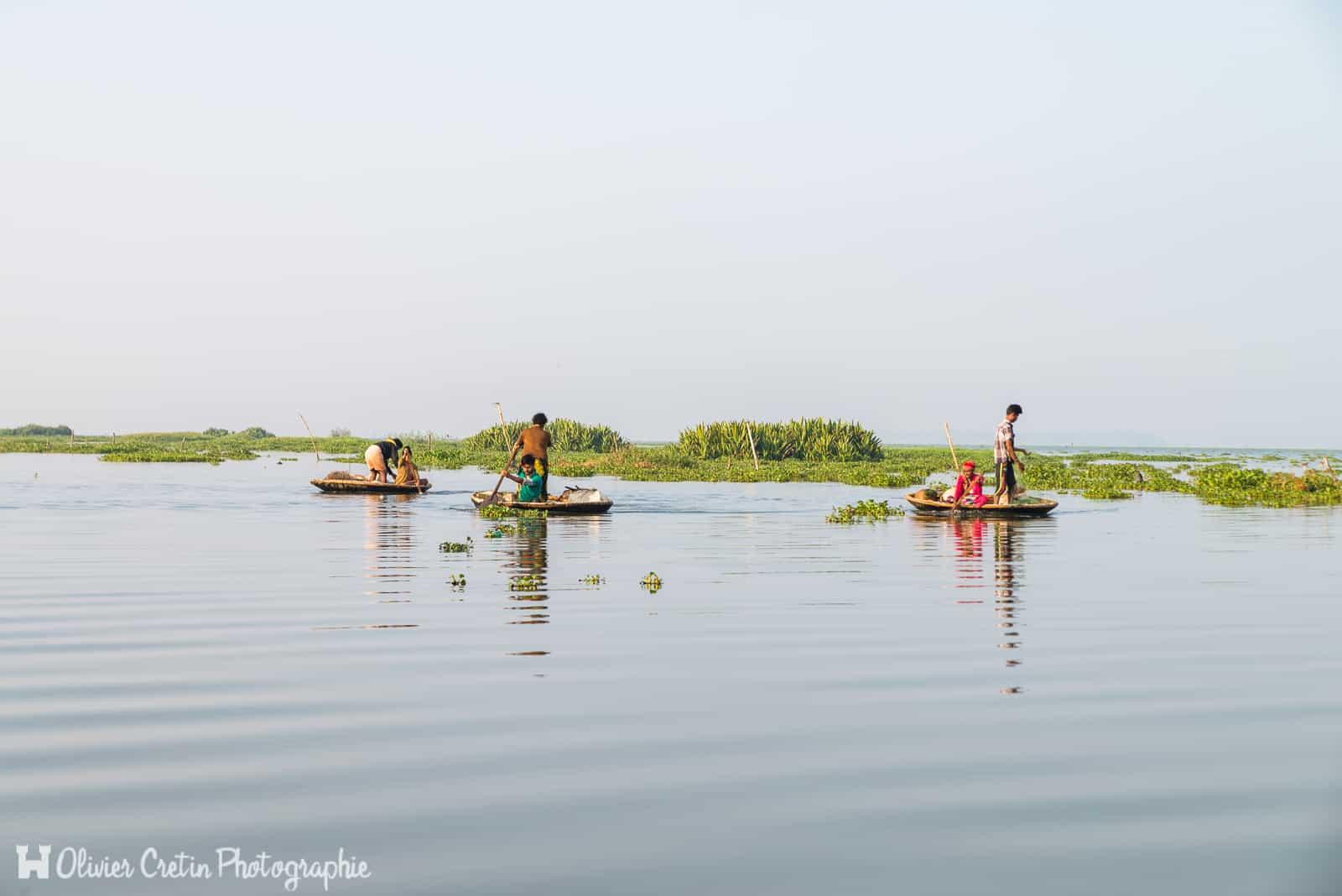 Inde - Kumarakom - Le ballet des pêcheurs sur le lac Vambanad
